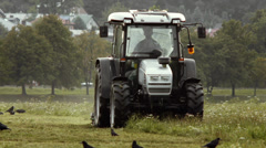 Tractor cutting grass surrounded by crows and jackdaws. FULL HD Stock Footage
