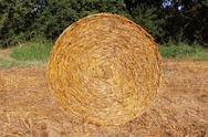 Stock Photo of stack of straw