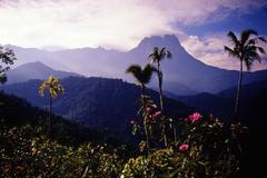 Travel photos pacific islands Stock Photos