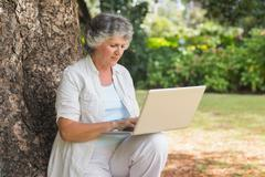 Stock Photo of Mature woman typing something into a laptop sitting on tree trunk
