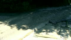 The river flooded road in nice sunny weather while the rays reflect on its Stock Footage