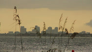Stock Video Footage of Skyline of St. Petersburg Florida from across Tampa Bay