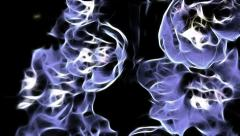Abstract delphinium Stock Footage