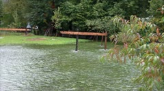 View of water in the garden during the flood Stock Footage