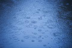 Raindrops rippling on water Stock Photos