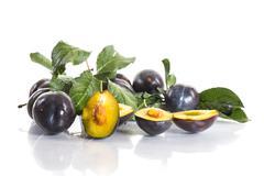 rip plums - stock photo