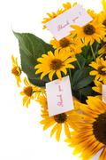 Bouquet of sunflowers and gratitude Stock Photos