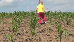 Rustic Scene of Little Girl Playing with Ground in a Corn Field, Rural Children - stock footage