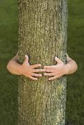 Person hugging tree - stock photo