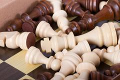 All chess pieces in one box Stock Photos