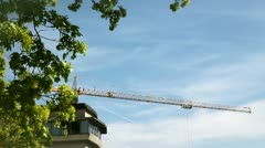 Fluctuation of leaves on tree and crane in background Stock Footage