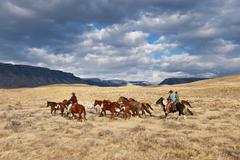 Cowboys herding horses Stock Photos