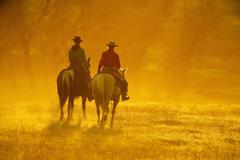 Horseback riders - stock photo
