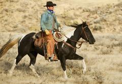 Horseback rider - stock photo