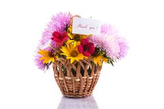 bouquet of asters - stock photo
