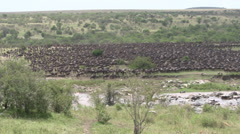 Africa, wildebeest migration pan, Serengeti safari - stock footage