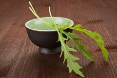 Culinary herbs. rocket. Stock Photos