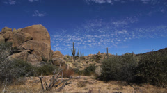 Desert landscape with boulders and cacti Stock Footage