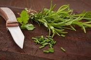 Stock Photo of culinary herbs collection.
