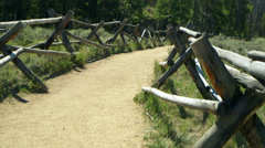 Tilt up from trail to mountain Stock Footage