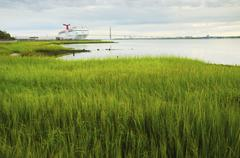 USA, South Carolina, Charleston, Green rushes on riverbank with ferry in Stock Photos