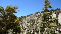 Mount Baldy Ski area - stock footage