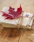 Autumn leaf on letters, studio shot - stock photo