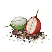 Ripe and Unripe Coffee Berries with Coffee Beans Stock Illustration