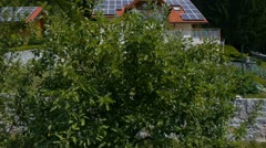 Behind the bush showing house with solar panels aerial shot - stock footage