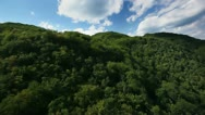 Stock Video Footage of hills covered with forest and surounded with clouds aerial shot