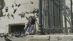 Pigeons & bike (slomo dolly)# Stock Footage