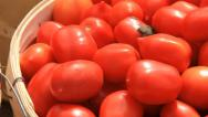 Stock Video Footage of Tomatoes 3