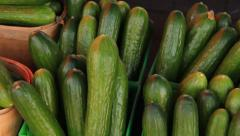 Zucchinis 1 Stock Footage