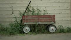 Old Red Wagon Overgrown with Weeds - Ultra High Definition 4K Stock Footage