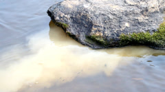 Dregs  under a stone Stock Footage