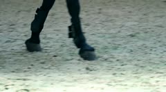 close up on horse hooves and girl jockey boots - stock footage