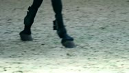 Stock Video Footage of close up on horse hooves and girl jockey boots