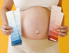 Pregnant woman holding paint swatches - stock photo