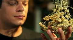 Man smelling dry herbs Stock Footage