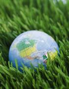 Globe on grass Stock Photos
