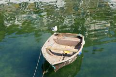 Old rough looking dinghy boat with paddle in green sea - stock photo
