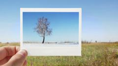 changing seasons - stock footage