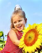 Kid holding sunflower outdoor. Stock Photos