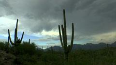 Turbulent Storm Clouds Arizona Saguaro Time Lapse - stock footage