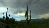 Stock Video Footage of Turbulent Storm Clouds Arizona Saguaro Time Lapse