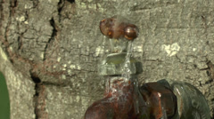 Leaky Spout 2 Stock Footage