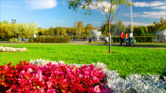 Summer day in a park. - stock footage