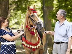 happy old couple with horse. - stock photo