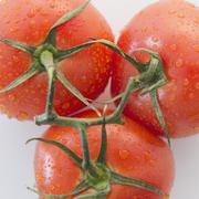 Stock Photo of Studio Shot of fresh tomatoes