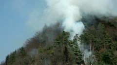 Smoke in forest, on the top of hill Stock Footage